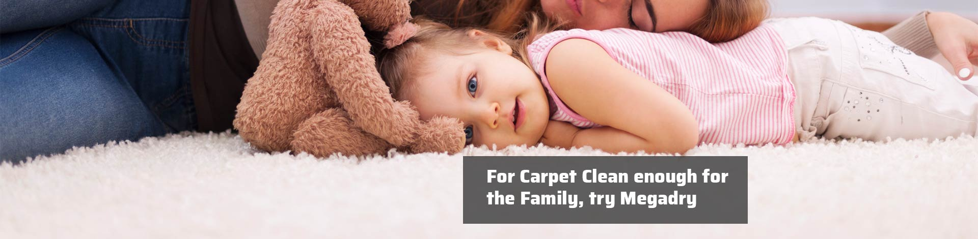 For Carpet Clean enough for the Family try Megadry